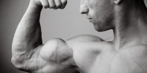 image top 5 exercices biceps
